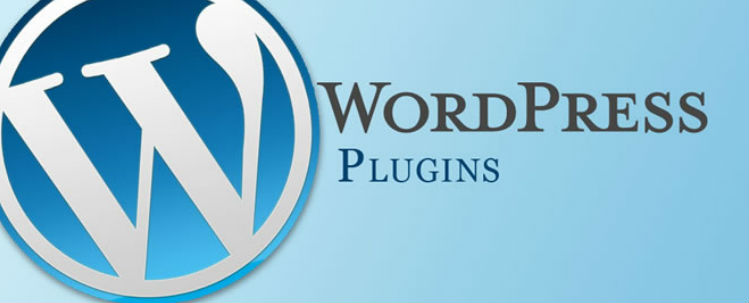 i migliori plugin wordpress per web designer
